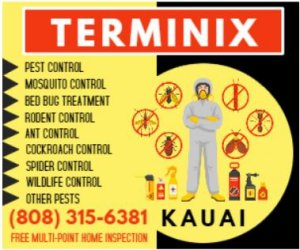 https://www.terminix.com/exterminators/hi/lihue-2081
